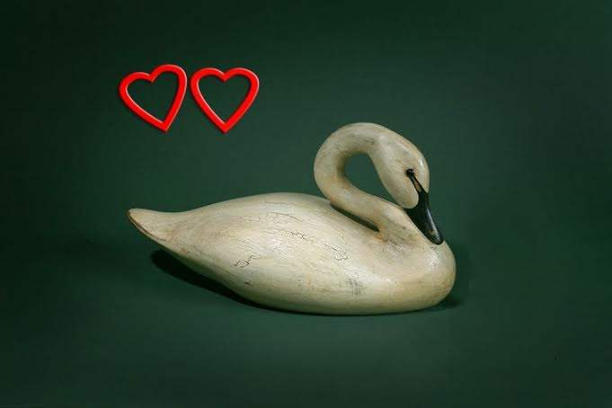Mother's Day Swan